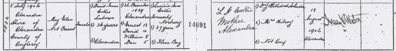 May Ellen Collis Birth Certificate.jpg